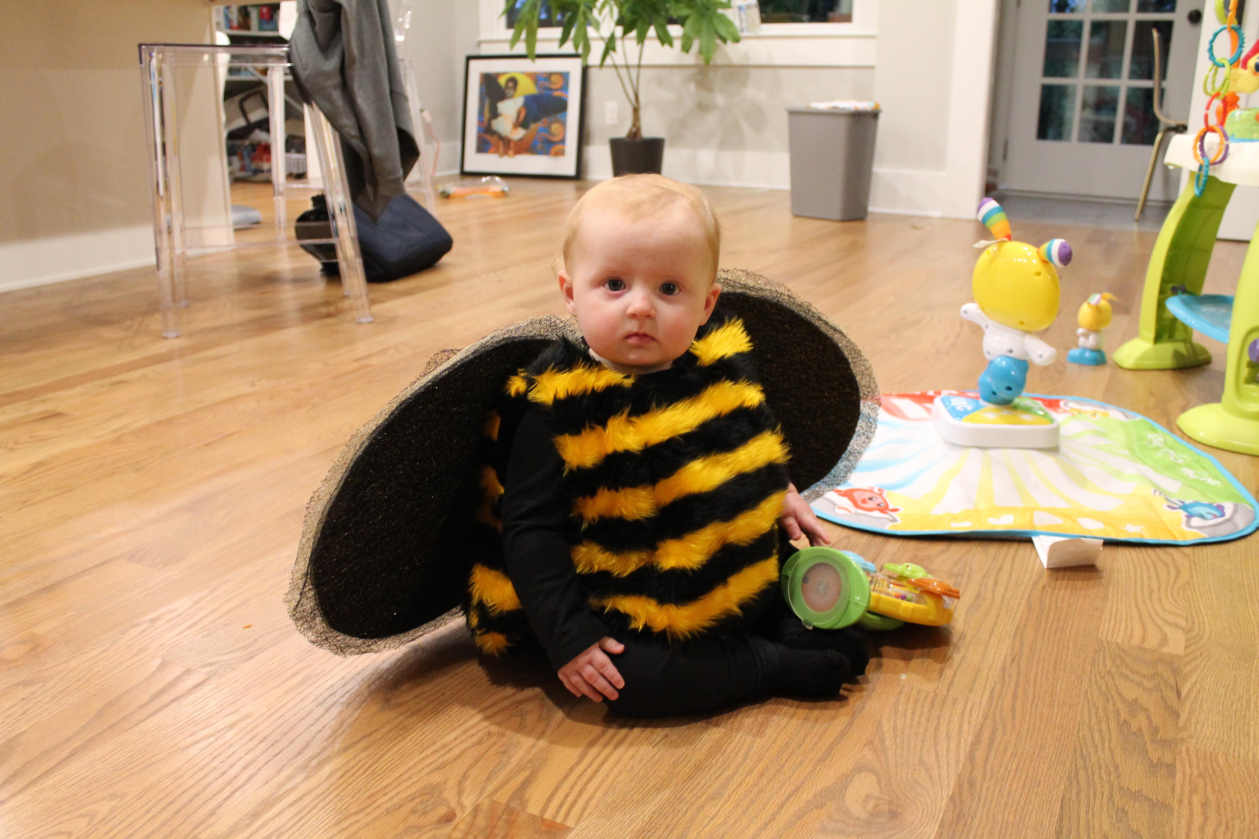 bee fur fabric