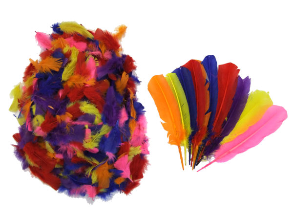 assorted-small-large-feathers